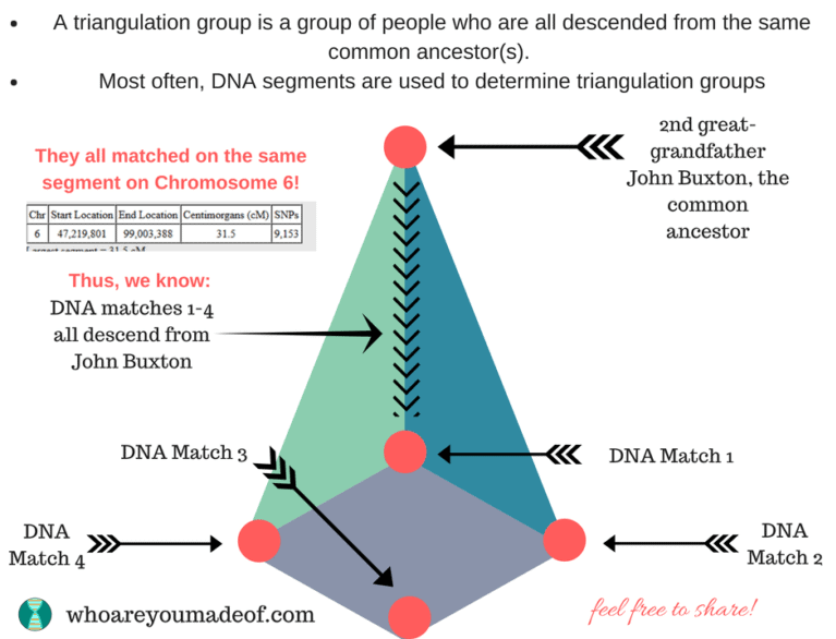 What is a triangulation group?  A triangulation group is a group of people who are all descended from the same common ancestor.  Most often, DNA segments are used to determine triangulation groups.